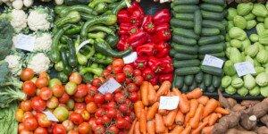 france-bans-food-waste-2-537x357